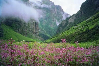 valley of flower mhet club